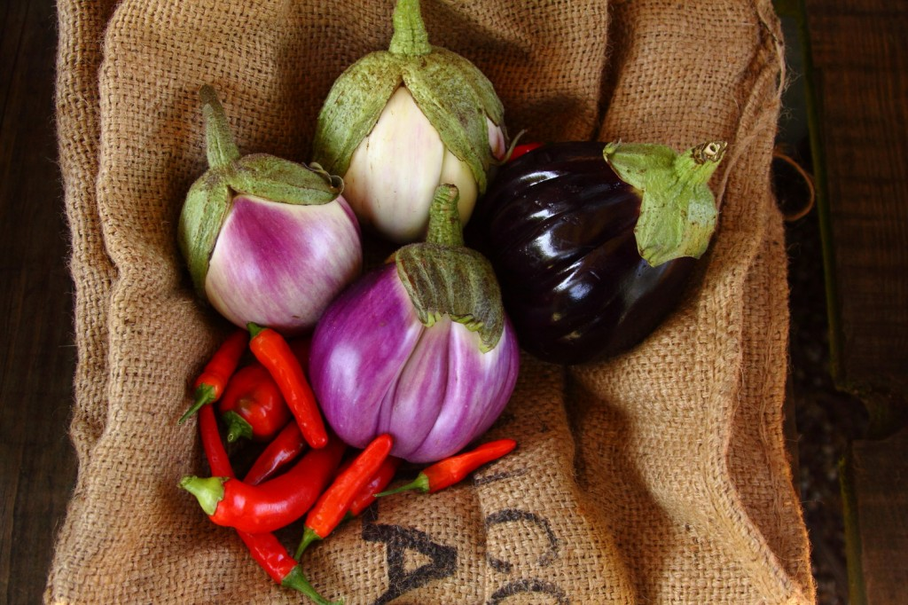 Own Grown Aubergines and Chillies