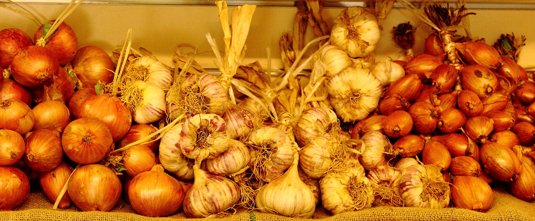 Roscoff Onions and Garlic